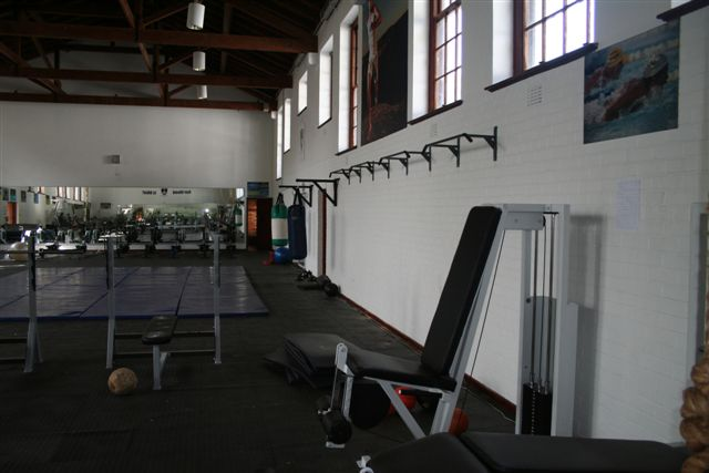 Pull Up Bars and Wrestling Mat