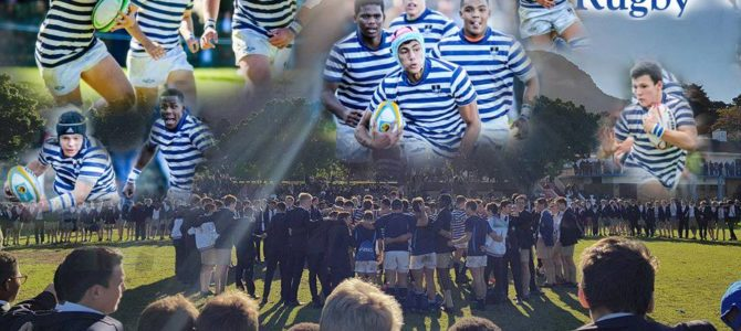 SACS Rugby Report for 2017